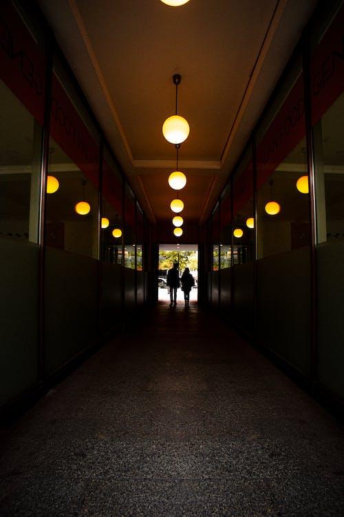 燈光, 門廳 的 免費圖庫相片