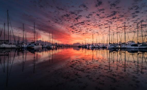 Free stock photo of sea, dawn, sunset, water