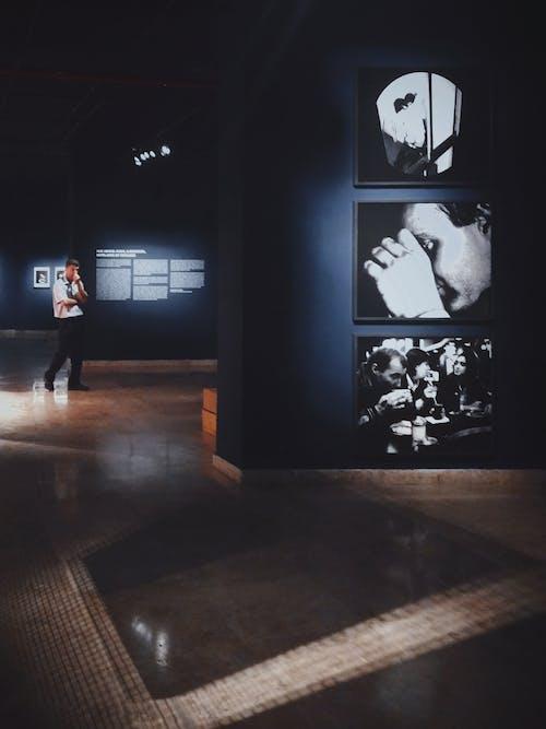 Бесплатное стоковое фото с в помещении, выставка, живопись, иллюстрация