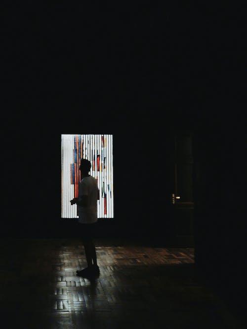 가벼운, 그림, 남성, 남자의 무료 스톡 사진