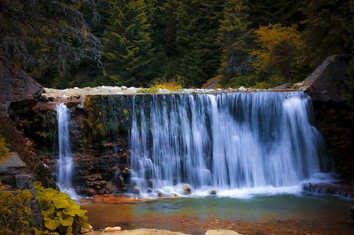 Ilmainen kuvapankkikuva tunnisteilla HD-taustakuva, kivikkoinen, luonto, metsä