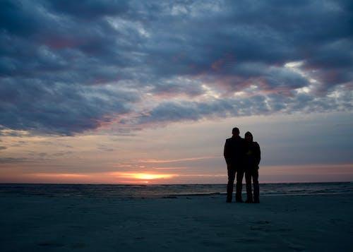 お父さん, ビーチ, 息子, 日の出の無料の写真素材