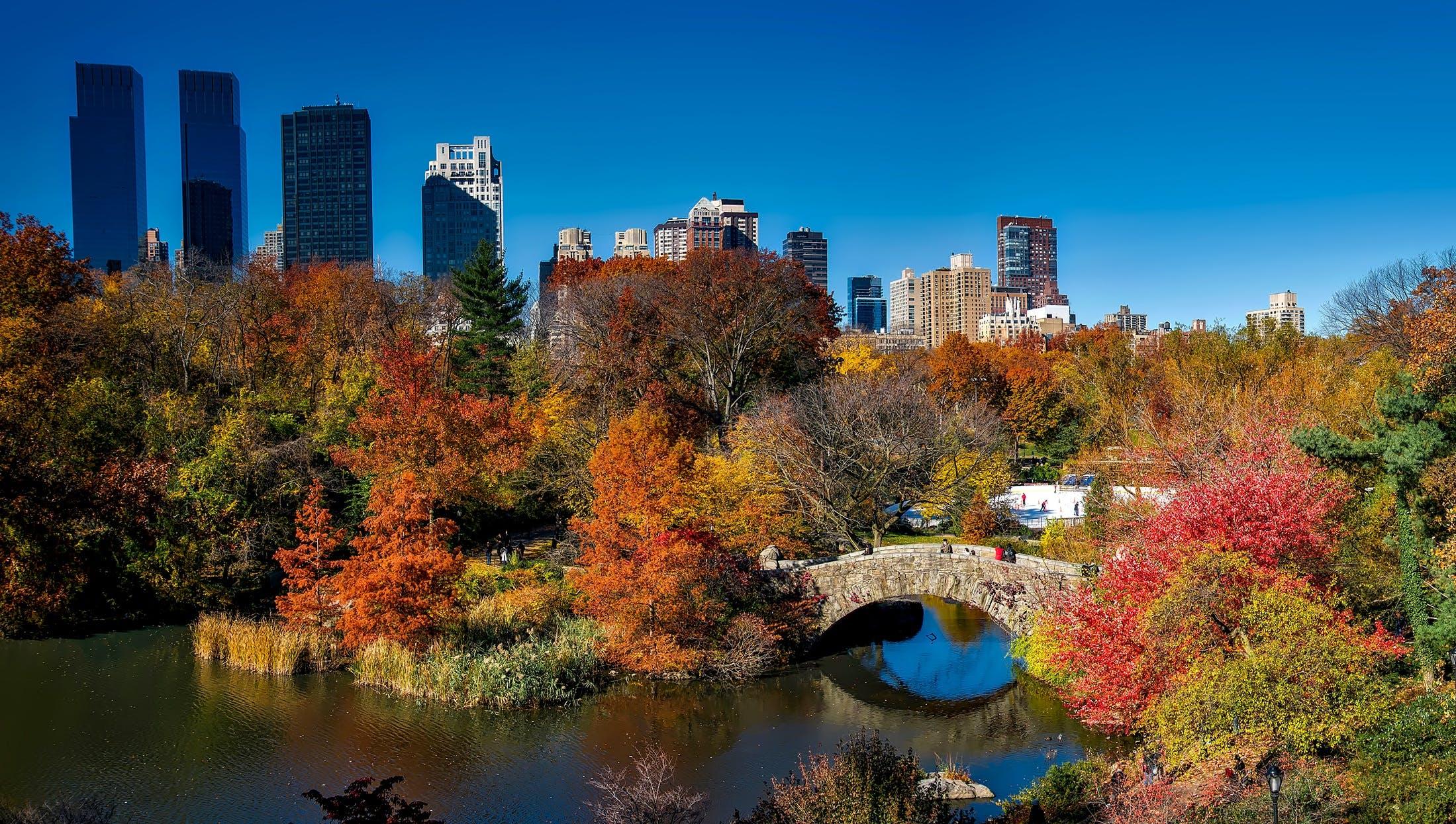 autumn, buildings, city