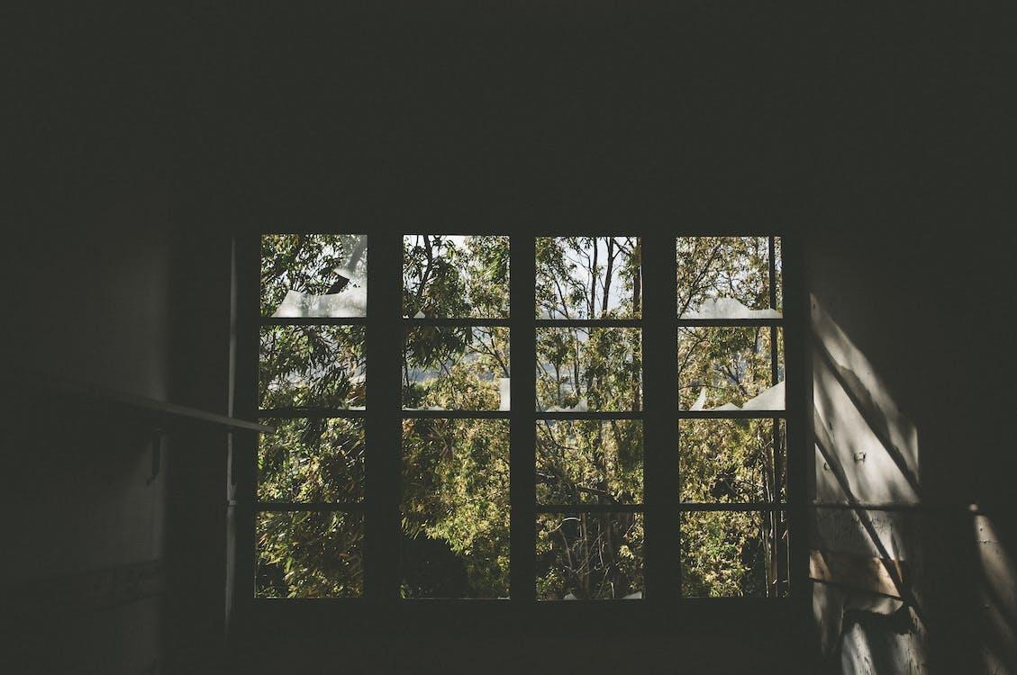 ถูกทอดทิ้ง, ถูกปล่อยปละละเลย, ย้อนแสง