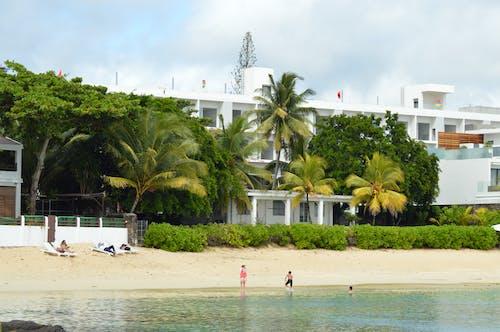 Ảnh lưu trữ miễn phí về bờ biển, cây cọ, khách sạn, maurican