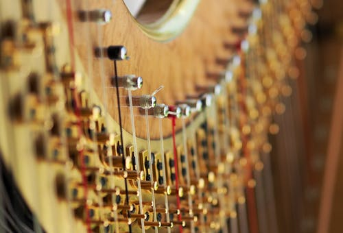 Selective Focus Photography of String Musical Instrument