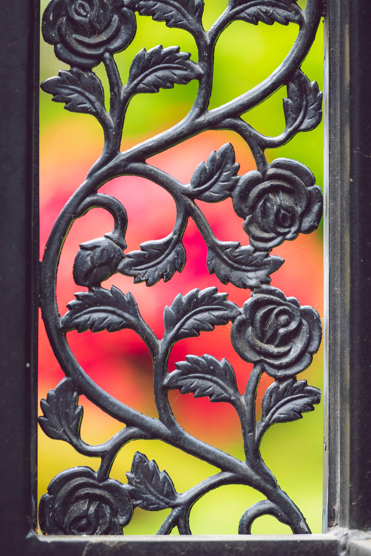 Foto stok gratis alam, besi, bunga, dekorasi