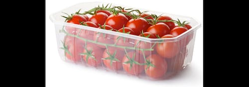 Free stock photo of Tomato Packaging