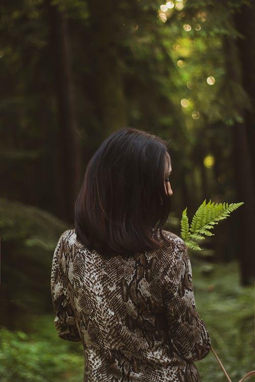 갈색 머리, 고사리 잎, 뒷모습, 사진 촬영의 무료 스톡 사진