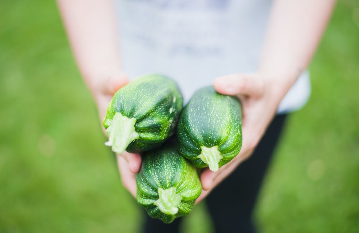 Ingyenes stockfotó aratás, cukkini, Egészség témában