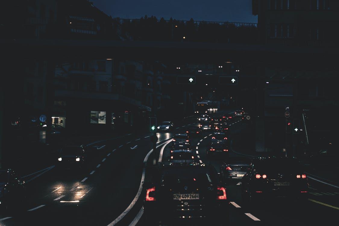 arbres, automoció, autopista