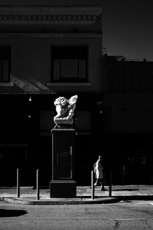 Fotobanka sbezplatnými fotkami na tému čierna a biela, čierny abiely, monochromatický, San Francisco