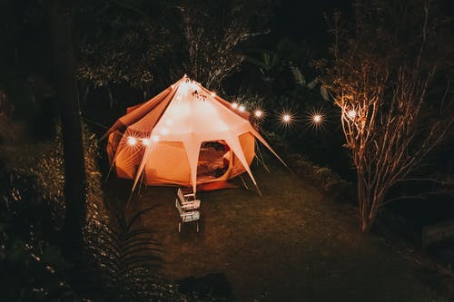Camping Tent Surrounded With Trees during Nighttime