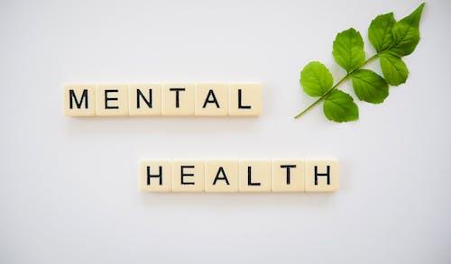 Free stock photo of healthy mind, mental health, mental wellness, mindfulness