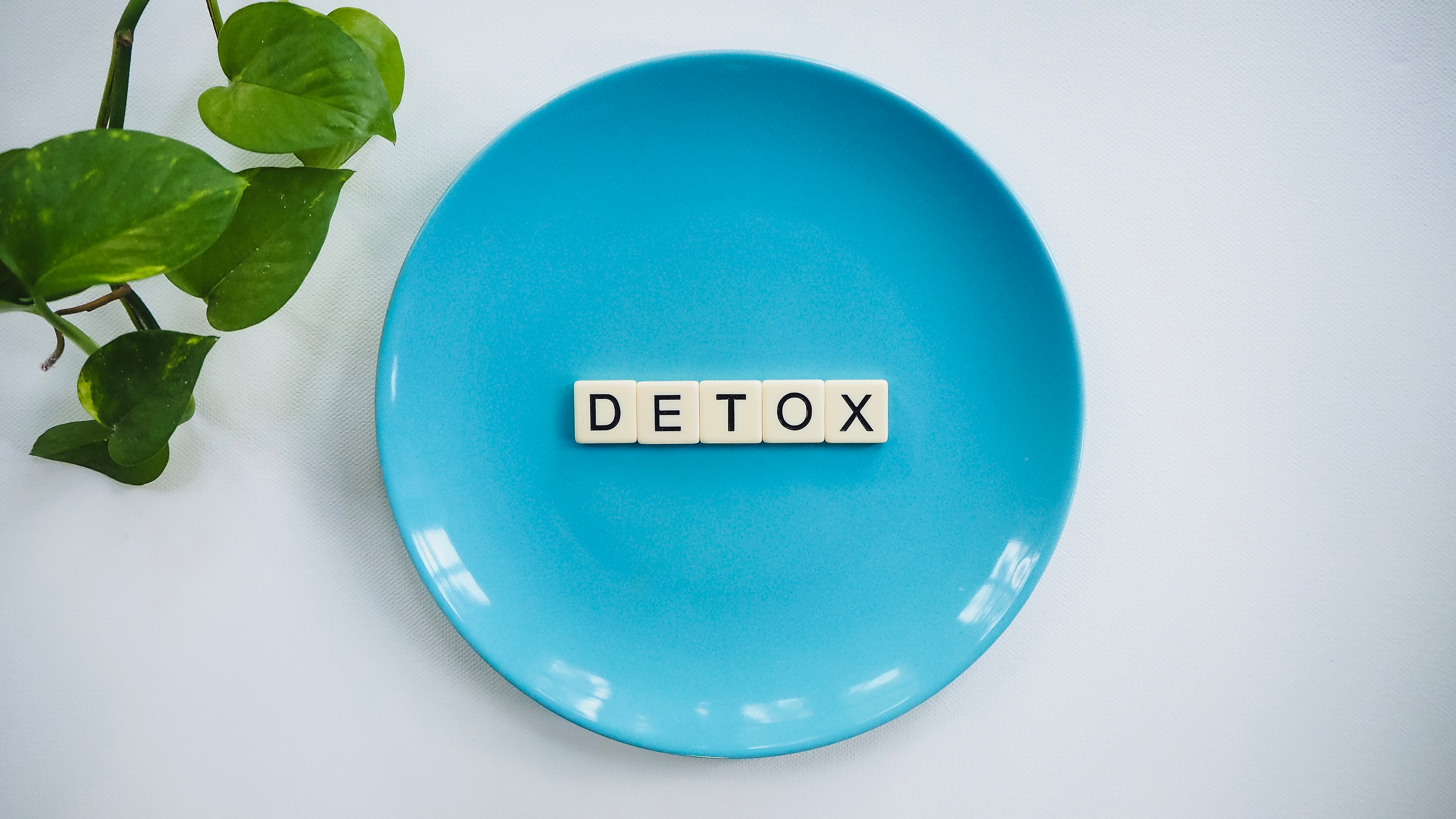 Detox Text on Round Blue Plate · Free Stock Photo
