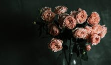 Photo of Pink Garden Rose Flowers in a Glass Vase
