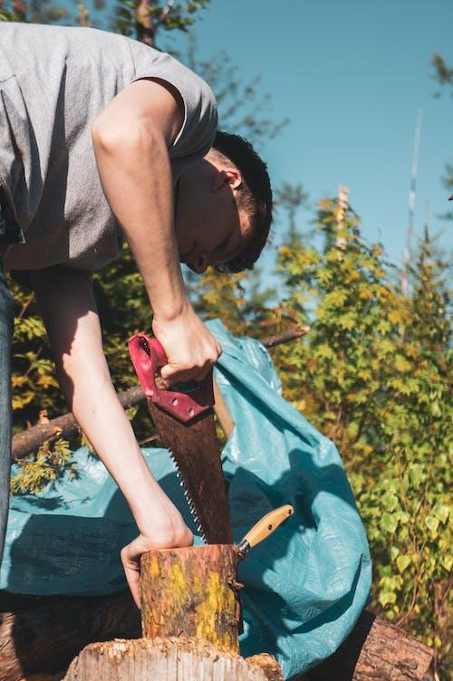 Základová fotografie zdarma na téma les, lidé, muž, na výšku
