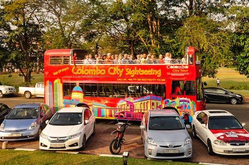 公車, 双层巴士, 科伦坡, 遊客 的 免费素材图片
