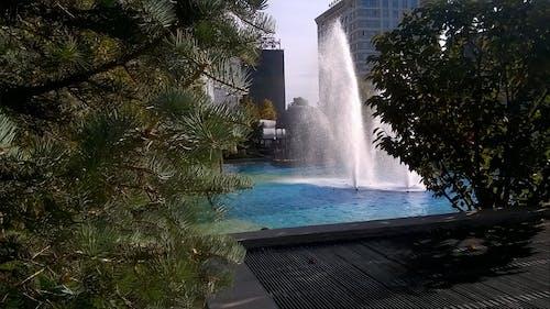 Základová fotografie zdarma na téma architektura, denní světlo, fontána, hotely