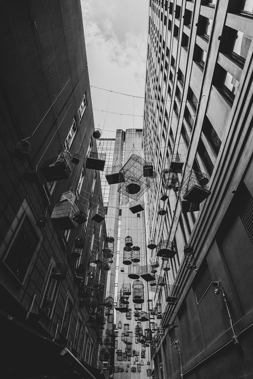 Free stock photo of black and white, buildings, cage