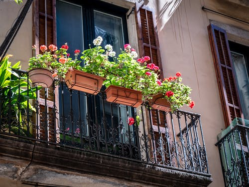 Foto stok gratis balkon, bangunan tua, bunga-bunga