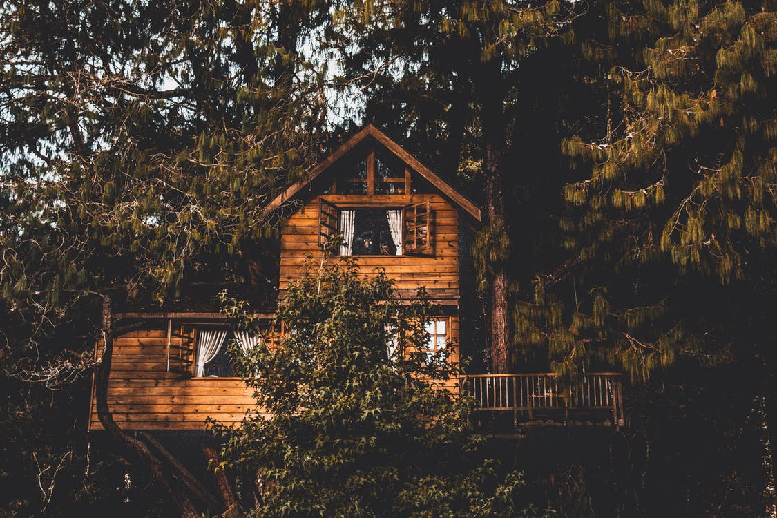 Brown Wooden Treehouse