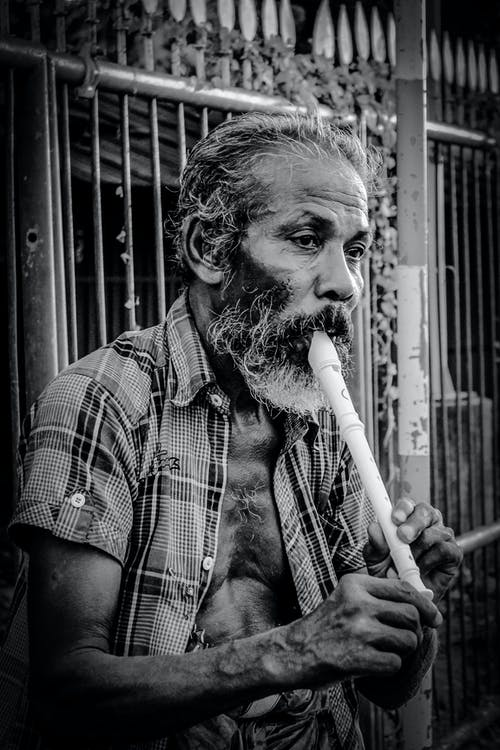 Free stock photo of begging, flute, man