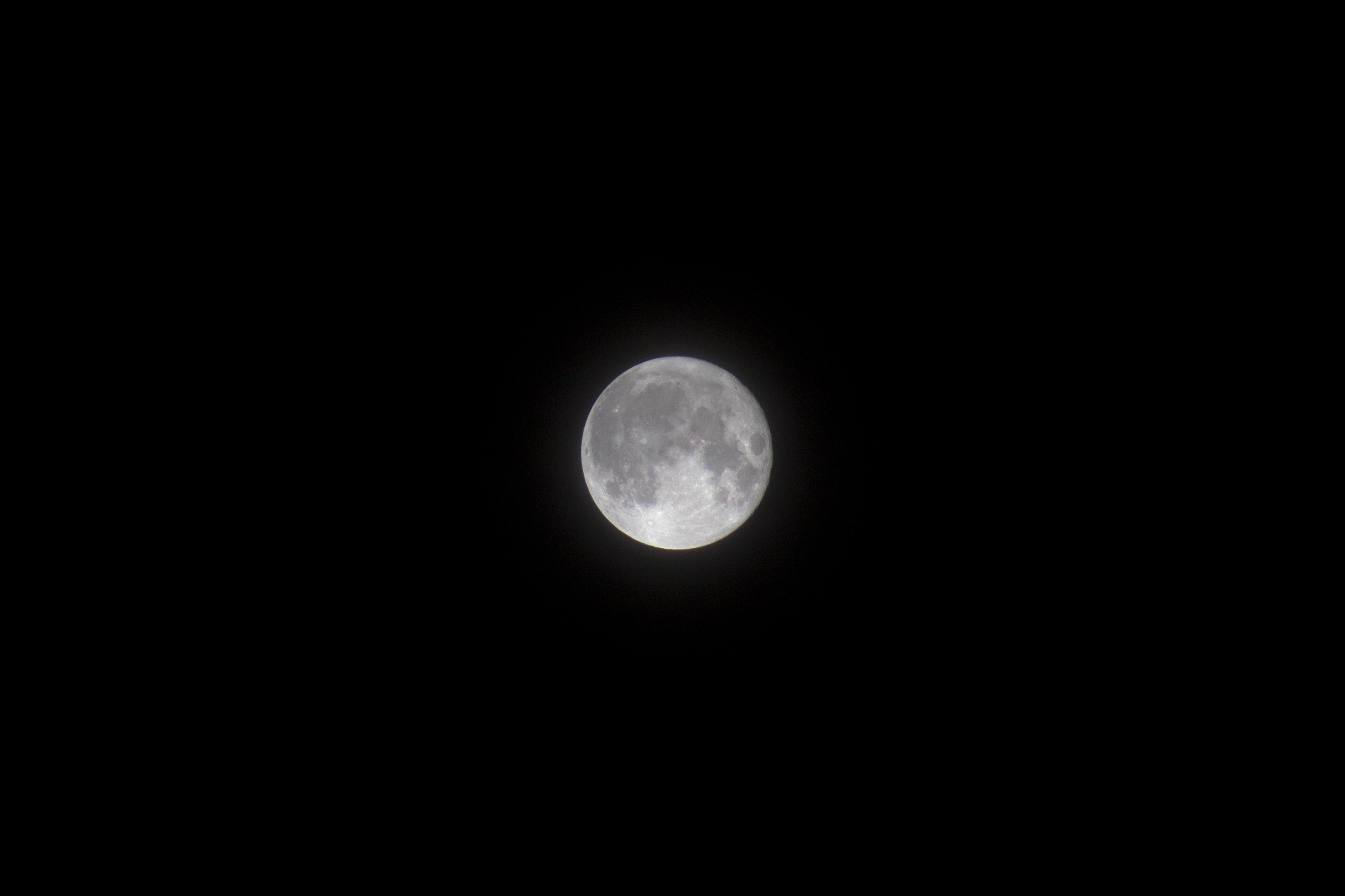 Best Wallpaper Night Dark - nature-sky-moon-night-238088  Image.jpg\u0026fm\u003djpg
