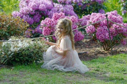 간, 공원, 귀여운, 금발의 무료 스톡 사진