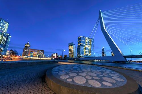 Free stock photo of bridge, landscap, night city