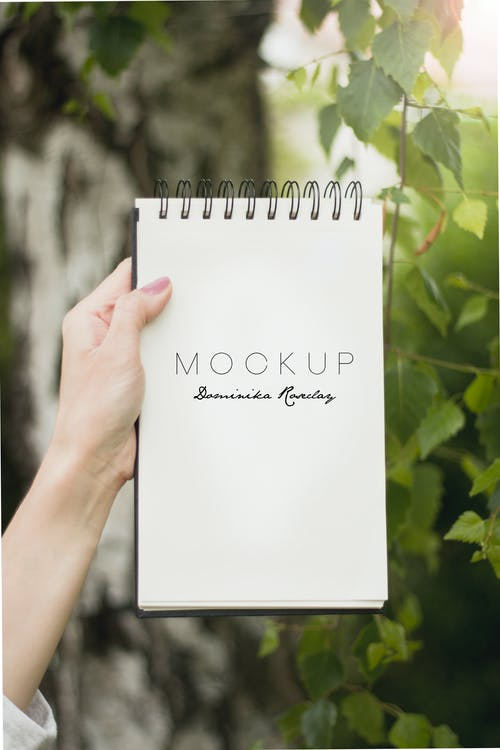 Mookup Notebook