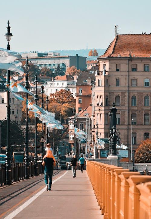 Photos gratuites de bâtiments, centre-ville, chaussée, citadin