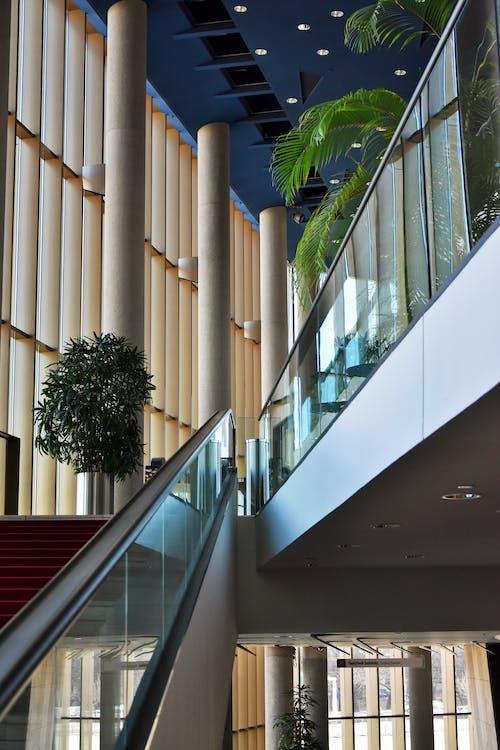 Foto stok gratis Arsitektur, bidikan sudut sempit, bisnis, dalam ruangan