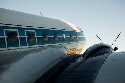 Безкоштовне стокове фото на тему «авіакомпанія, авіалайнер, Авіація, вікна літака»