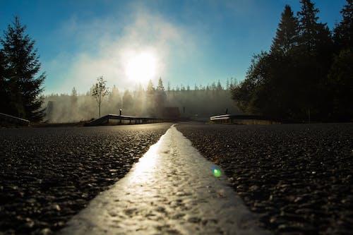 가이드, 경치가 좋은, 고속도로, 길의 무료 스톡 사진