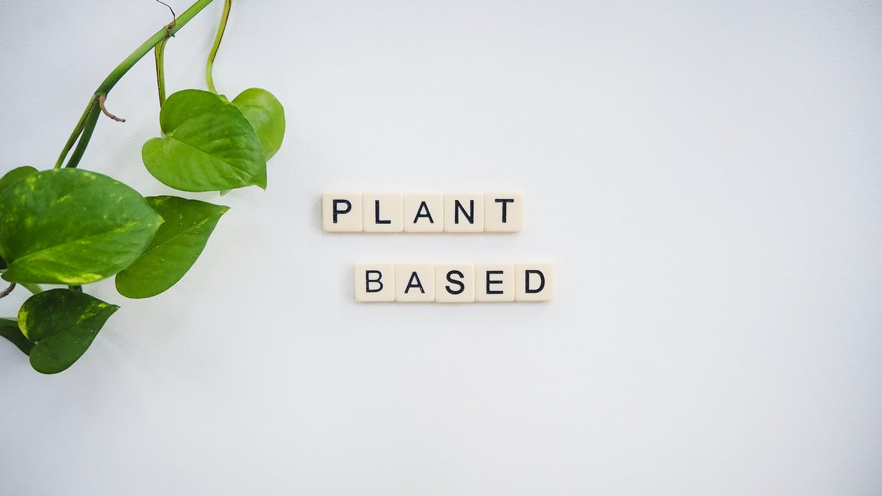 Free stock photo of plant based, plant diet, vegan
