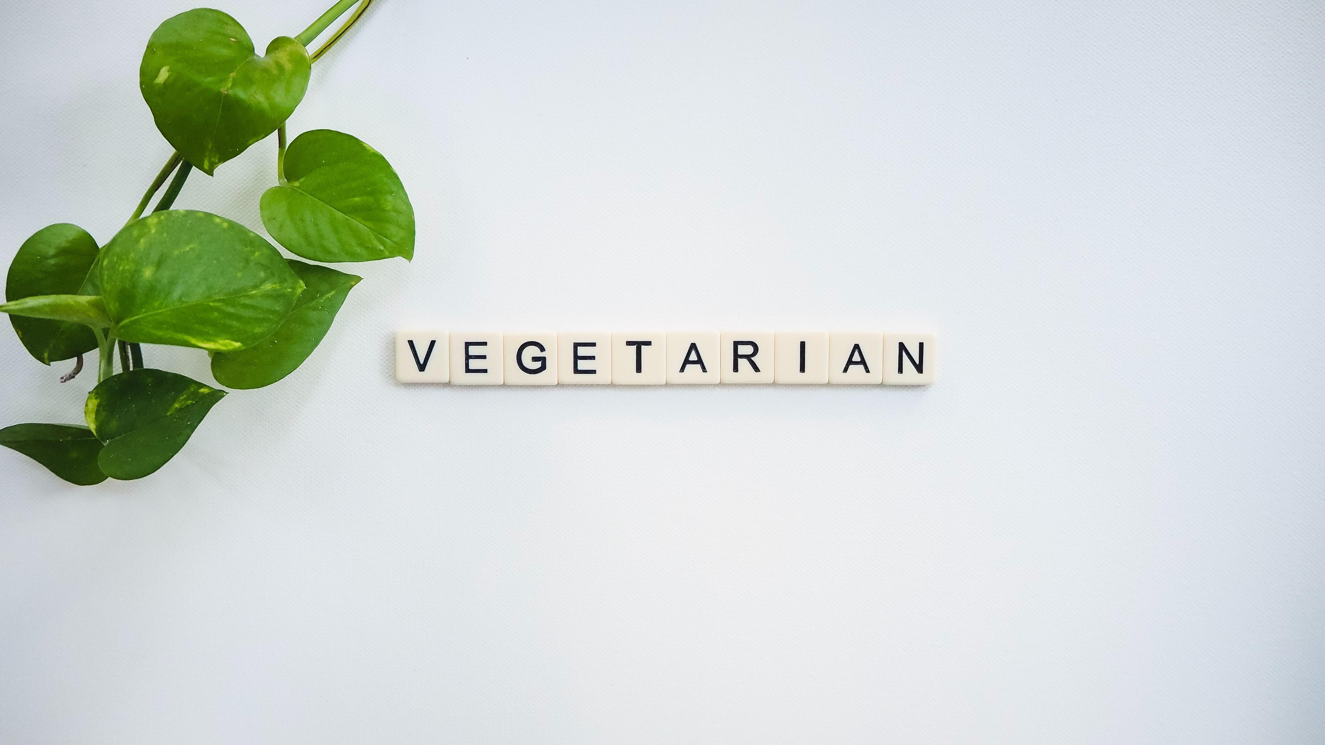 Green Leaf Near White Vegetarian Tile · Free Stock Photo