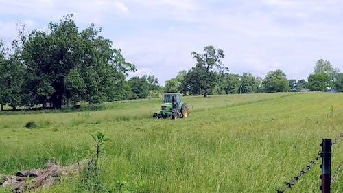 Ilmainen kuvapankkikuva tunnisteilla aita, heinäpelto, karja, niitto heinää