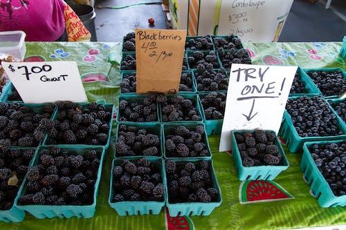 Základová fotografie zdarma na téma agbiopix, blackberry, farmářský trh, ostružina