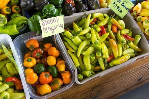 Kostnadsfri bild av agbiopix, balanserad diet, bondens marknad, företag
