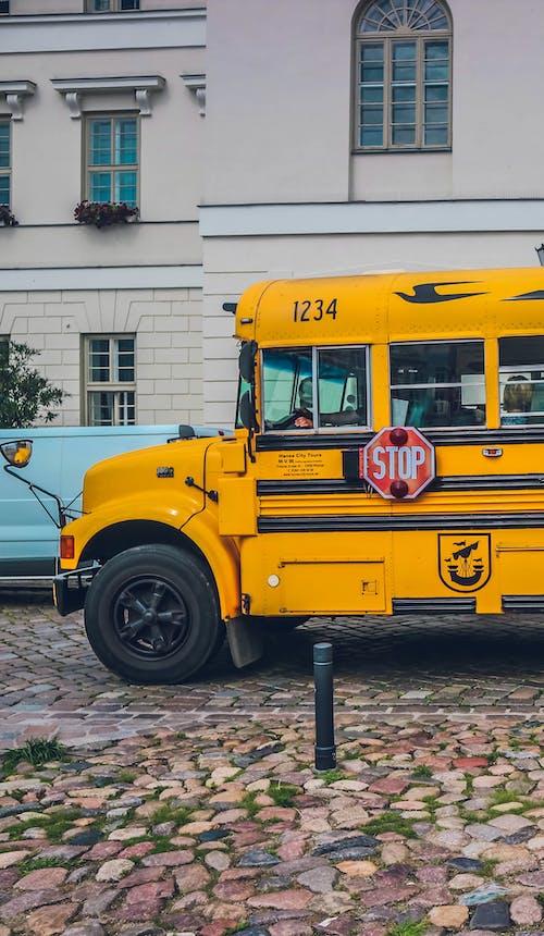 버스의 무료 스톡 사진