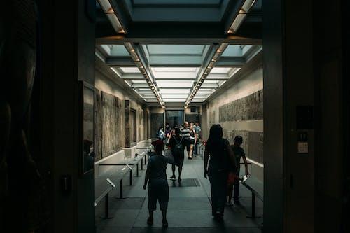 Gratis stockfoto met actie, architectuur, binnen, doorgang