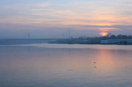 Free stock photo of Belgrade, city, landscape, nature