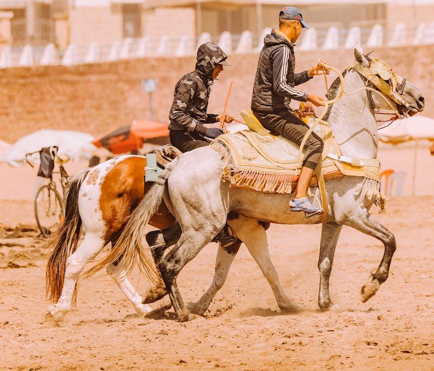 Two Horseman Riding on Horses