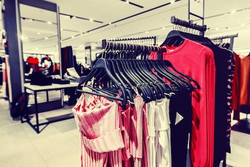 Gratis lagerfoto af afdeling, butik, fashionabel, garderobe