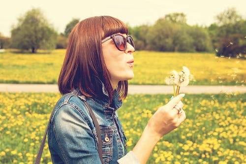Side View Portrait Photo of Woman in Blue Denim Jacket and Sunglasses Blowing on Dandelion Flowers