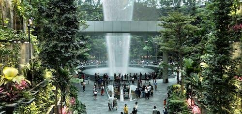 Základová fotografie zdarma na téma nejvyšší krytý vodopád