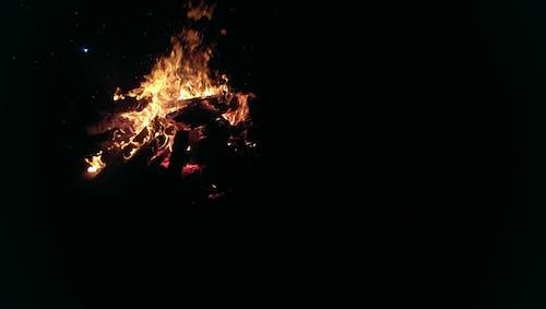 Foto profissional grátis de fogo, natureza, noite, vida noturna