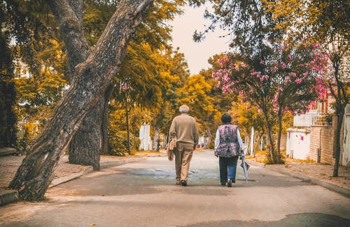 Fotos de stock gratuitas de adultos, al aire libre, anciano, arboles