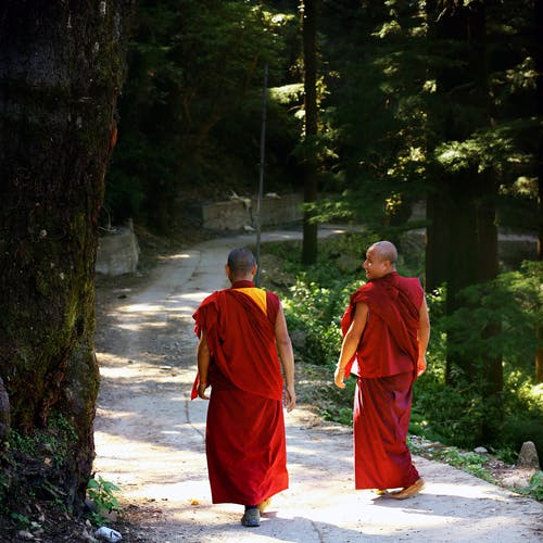Two Monks Walking on Trail Lined With Trees